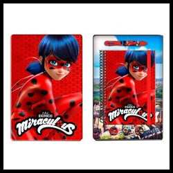 Diary Gift Set Miraculous Ladybug 4 pcs  Ballpen Badges Metal Tin Box