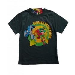 Camiseta BATMAN y GREEN ARROW gris